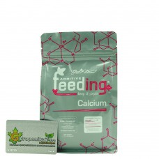 Powder Feeding Calcium 500 гр.