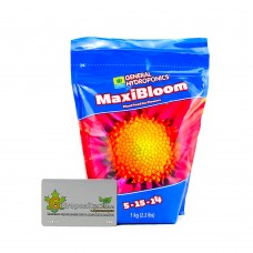 GHE Maxi Series MaxiBloom 1 кг