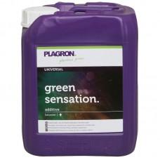 Green Sensation 5 л