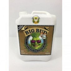 Big Bud Coco Liquid Advanced Nutrients 5 л