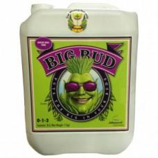 Big Bud Liquid Advanced Nutrients 5 л